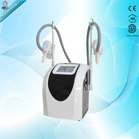 Professional Salon use cryolipolysis slimming machine fat freeze cellulite removal equipment with two sizes of handles
