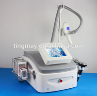 Factory supply cryolipolysis venus freeze machine TM-908A