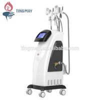 Latest technology cryolipolysis weight loss liposuction crioliposis machine