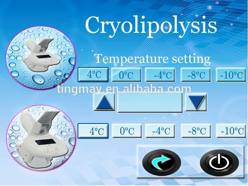 Fat Reduction Portable 2 handles Cryolipolysis Slimming Machines/Fat freezing