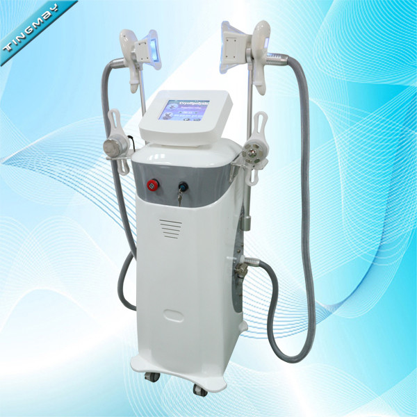Vertical professional cryotherapy cryolipolysis slimming machine